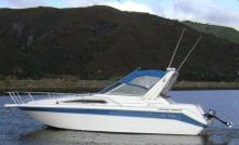 Sea Ray270
