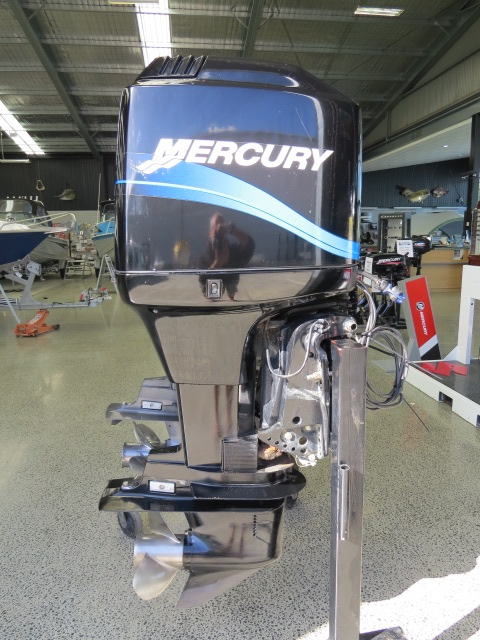 Mercury115 ELPTO
