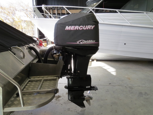 Mercury Optimax