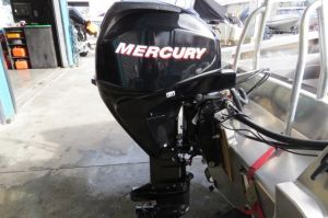 MercuryF30ELPT EFI