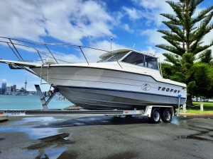 Bayliner Trophy offshore hardtop